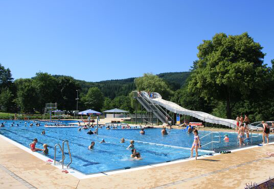 Schwimmbad_Seelbach